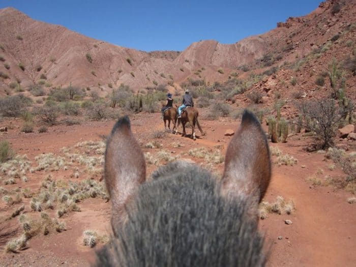 View from horse while riding in Tupiza
