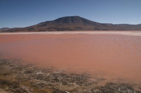 Laguna Colorada, red lake on Bolivia's salt flats tour