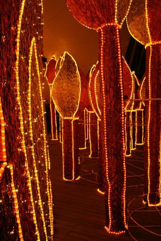 Matchsticks, Medellin Christmas lights