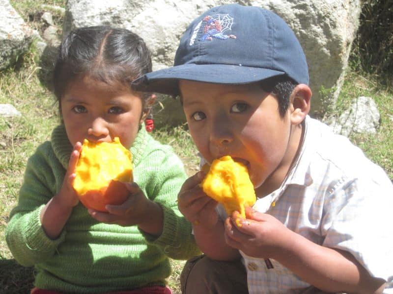 Andean kids enjoying mangos