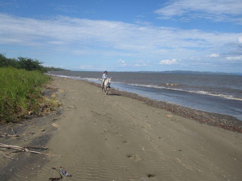 Horse Riding on the beach in Santa Catalina, Panama