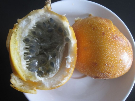 granadilla fruit, Colombia