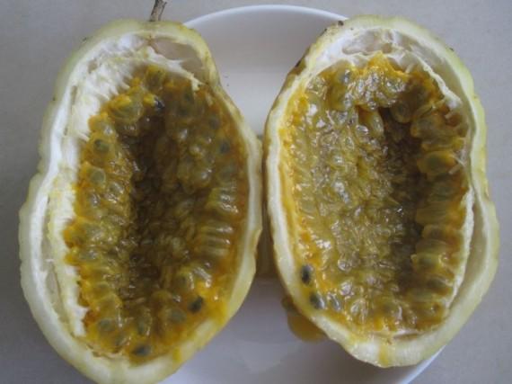 maracuya_passionfruit