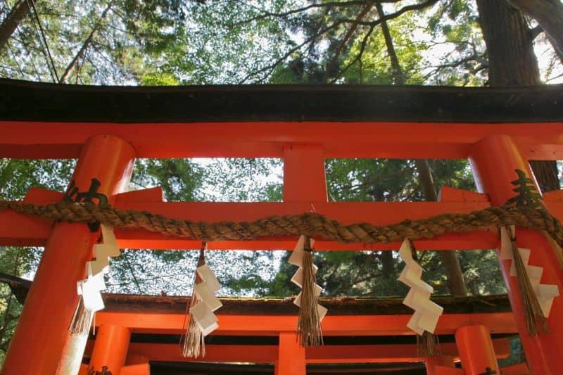 Shimenawa on a torii gate at Fushimi Inari Shrine, Kyoto