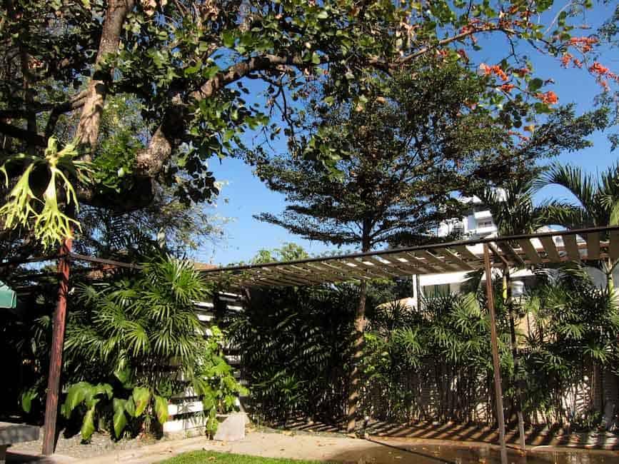 Khun Churn garden, Chiang Mai