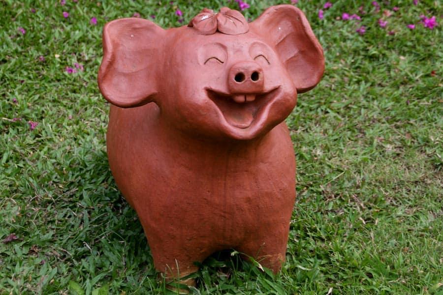 Wat Lok Mali pig