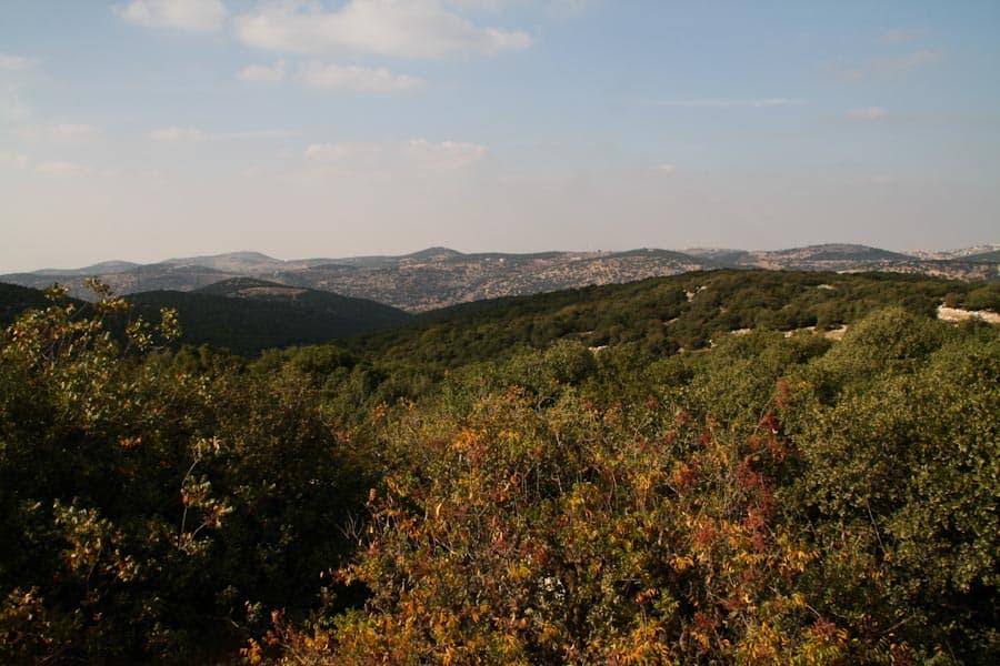 Ajloun Nature Reserve, Jordan