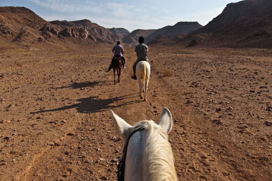 Horse riding in Wadi Rum