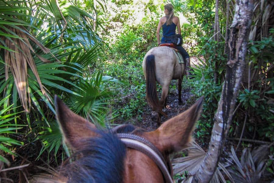 Riding through jungle to get to beach
