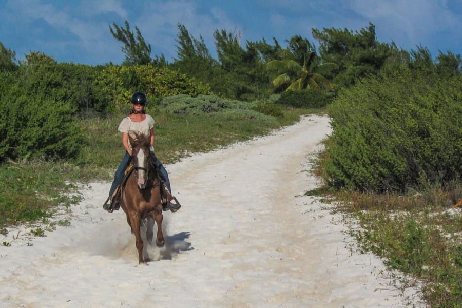 Erin cantering