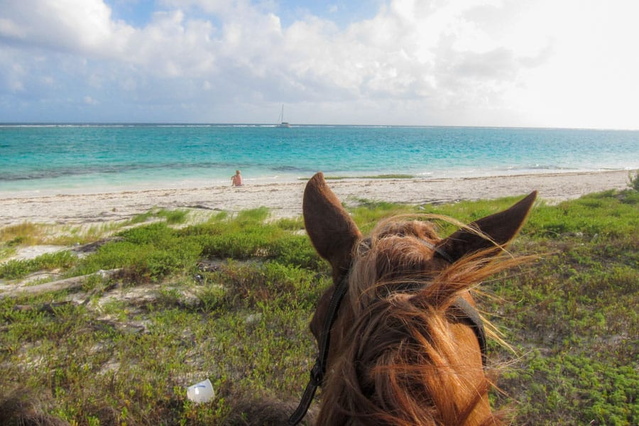 Rey at Maroma beach