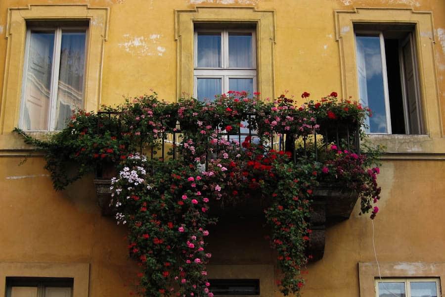 Trastevere balcony, Rome