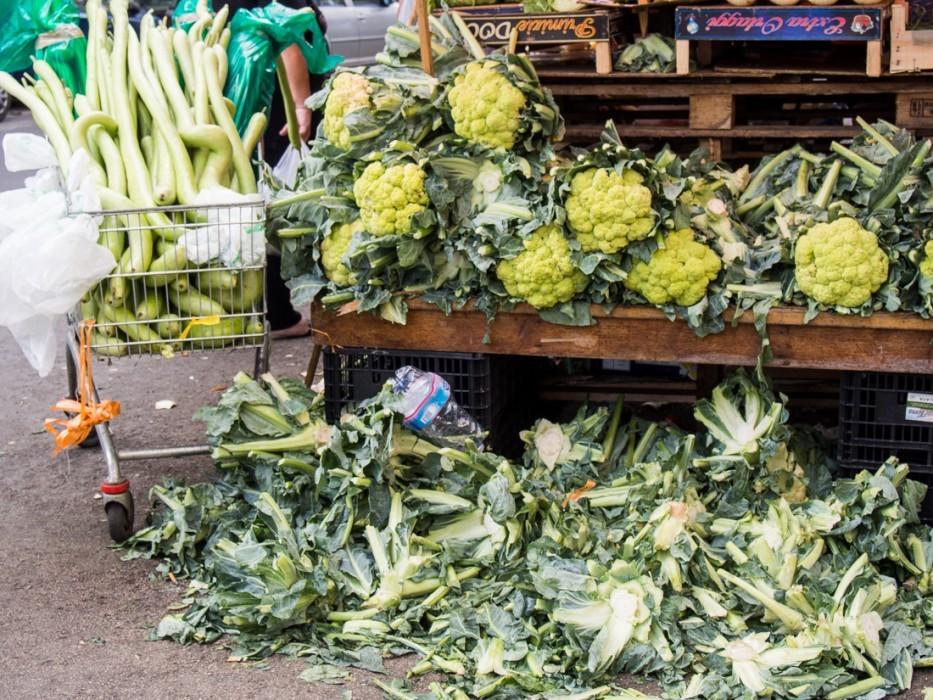 Long cucuzza and green cauliflower, Ballaro market