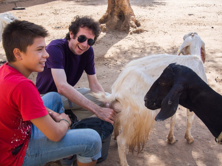 Milking a goat at Masseria Sant Angelo