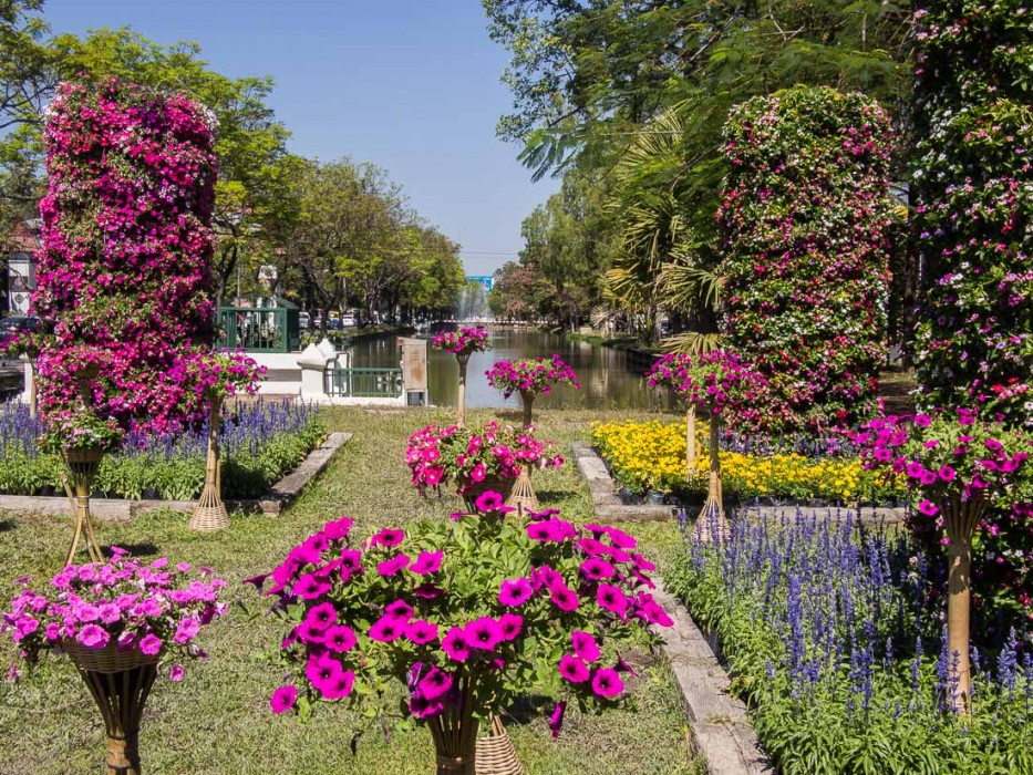 Chiang Mai's moat during the Flower Festival