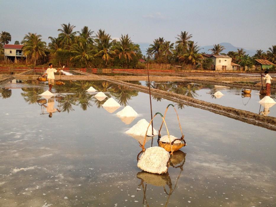 Salt Fields, Kampot, Cambodia