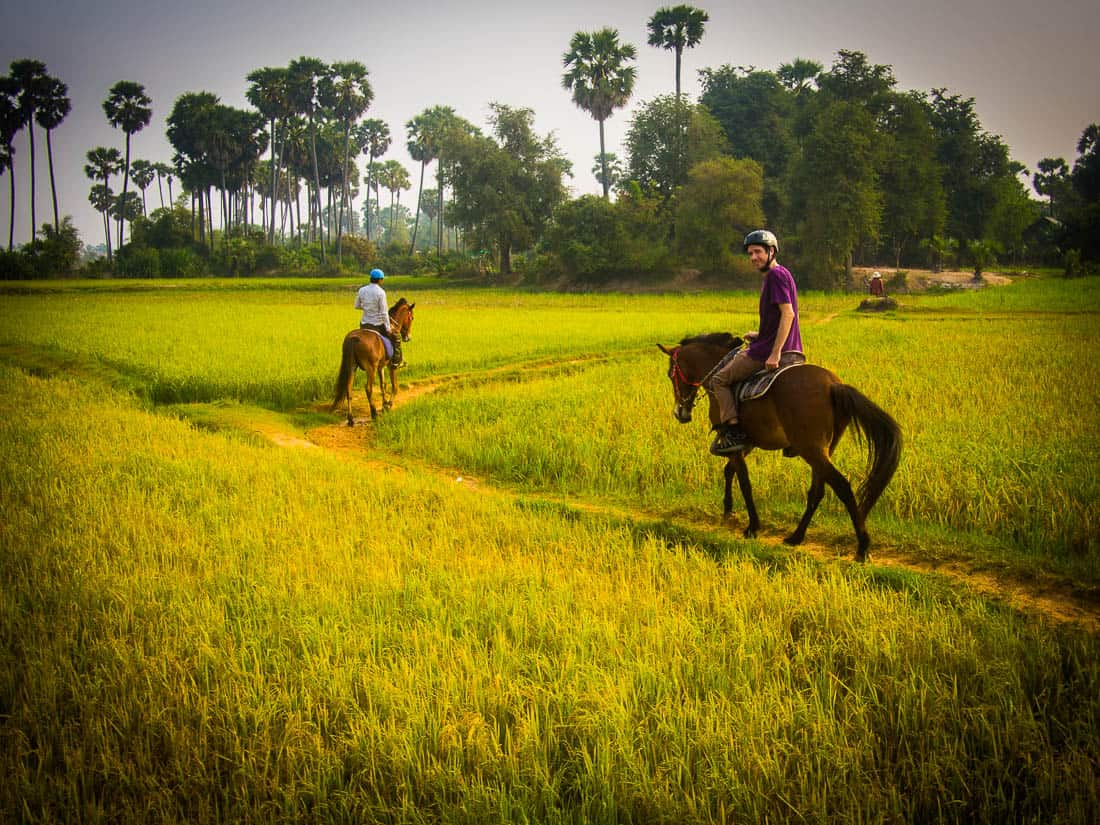 Horse riding through rice paddies with The Happy Ranch, Siem Reap