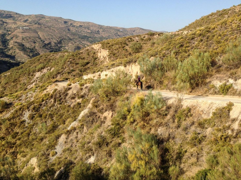 Horseriding in the Alpujarras