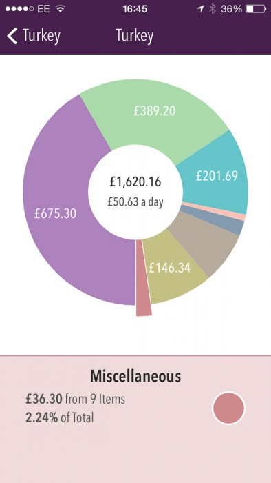 Turkey travel costs-miscellaneous