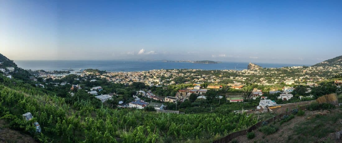 Campania wine and sail review