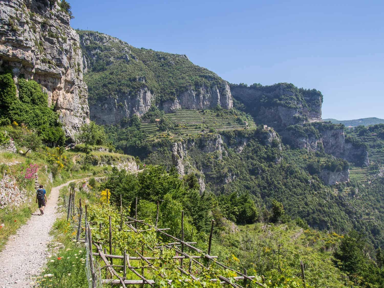 Terraced vineyards on the Path of the Gods hike, Amalfi Coast