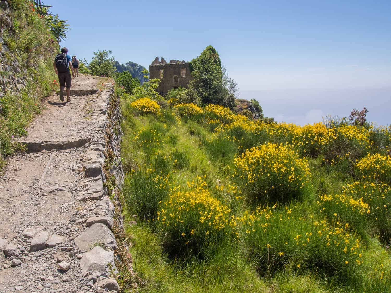 Simon hiking past yellow wildflowers on the Path of the Gods Amalfi