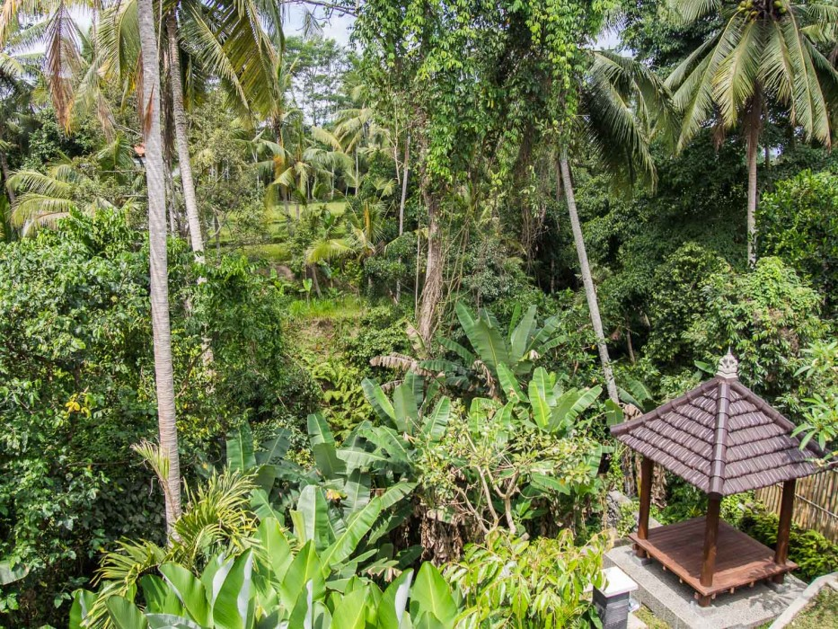 How to find a house to rent in Ubud - our view