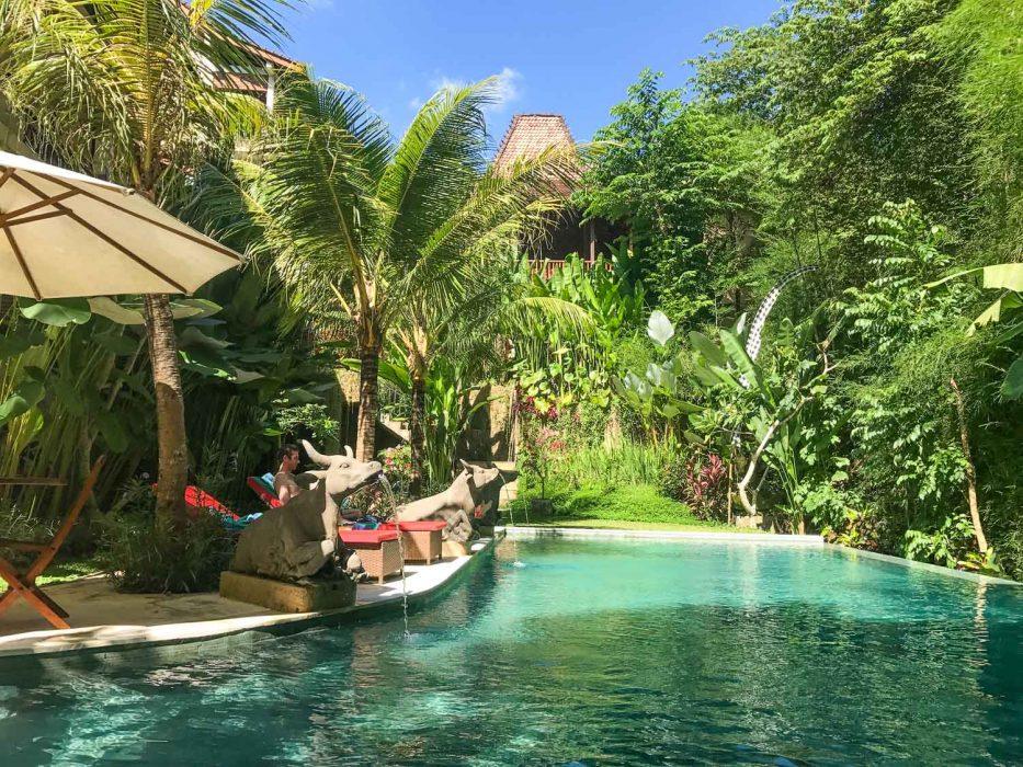 Desak putu putera cottage pool in Ubud