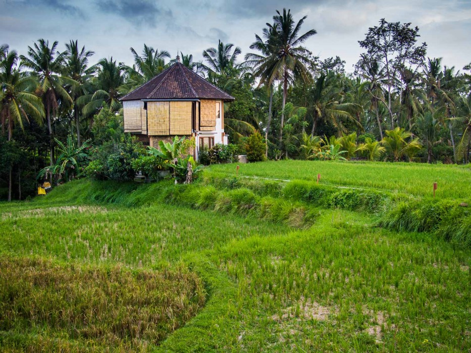 Ubud Yoga House review