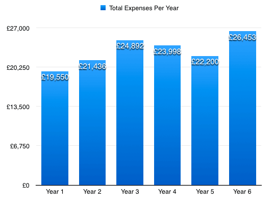 Digital nomad expenses by year