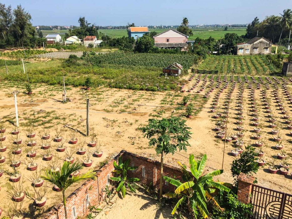 Hoi An house rental -our view at Lotus Apartments