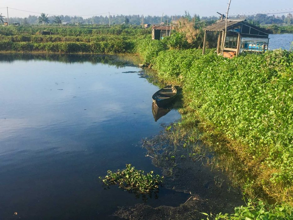 Waterways on my running route in Hoi An