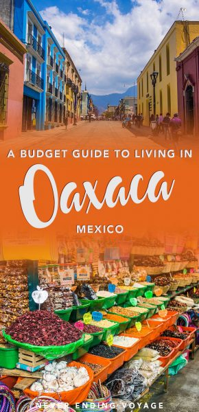 Wonder how much it costs to live in Oaxaca, Mexico? Here's our full budget breakdown of living there as digital nomads.
