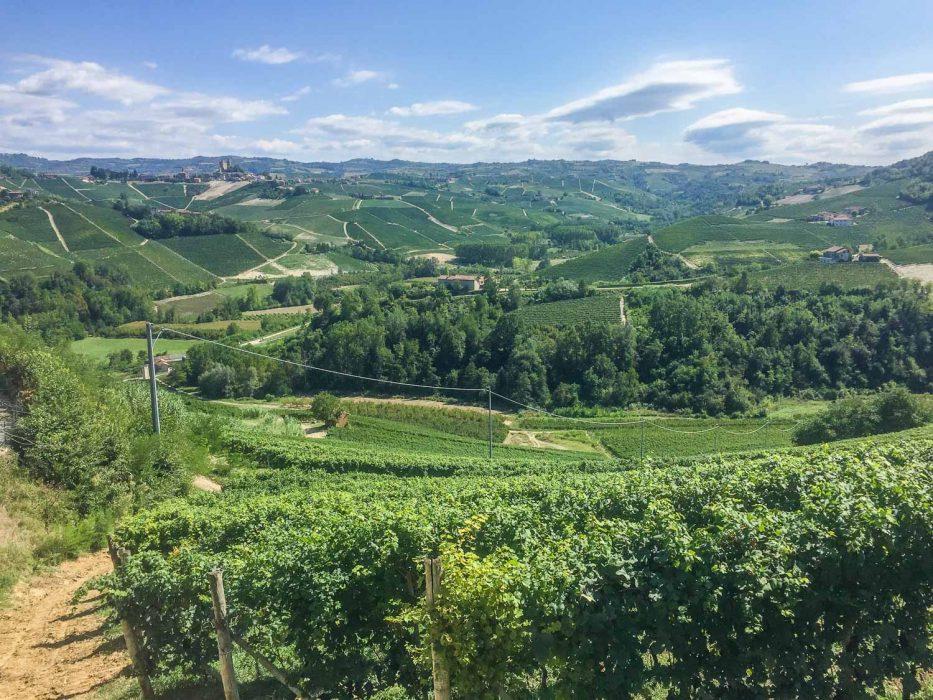 The view from Bar la Terrazza da Renza, Castiglione Falletto in Barolo wine region