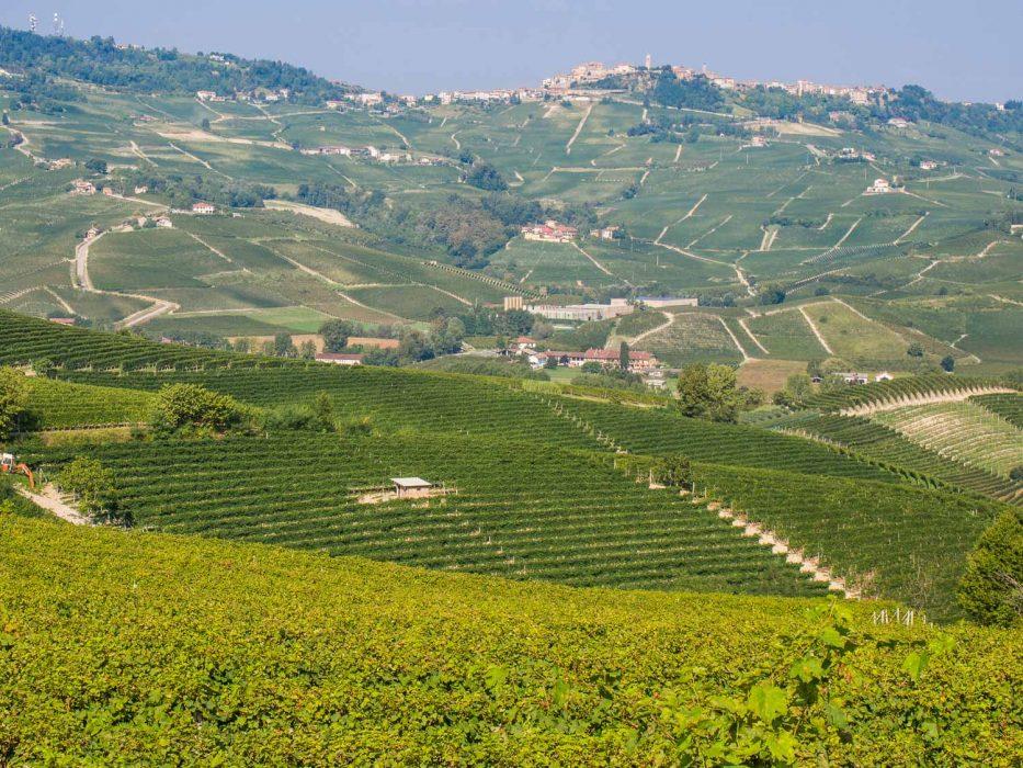 Langhe, Piemonte - view to La Morra
