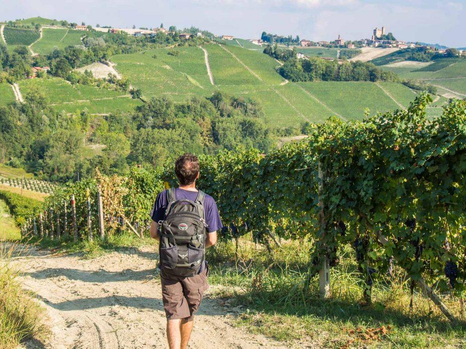 Langhe, Piemonte -Hikes in the vineyards