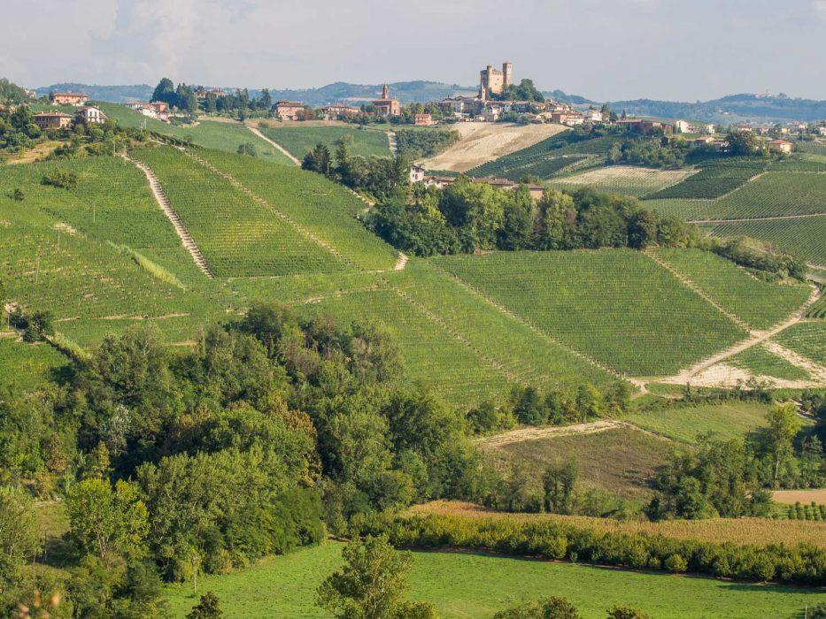 The view of Serralunga from Castiglione Falletto