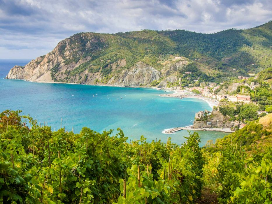 Hiking past vineyards towards Monterosso al Mare, one of the Cinque Terre villages
