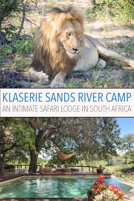 Klaserie Sands River Camp is a luxurious, intimate safari lodge in Kruger, South Africa with just four rooms. It's the best place we've ever stayed and the wildlife viewing is superb. Click through to read our detailed review.