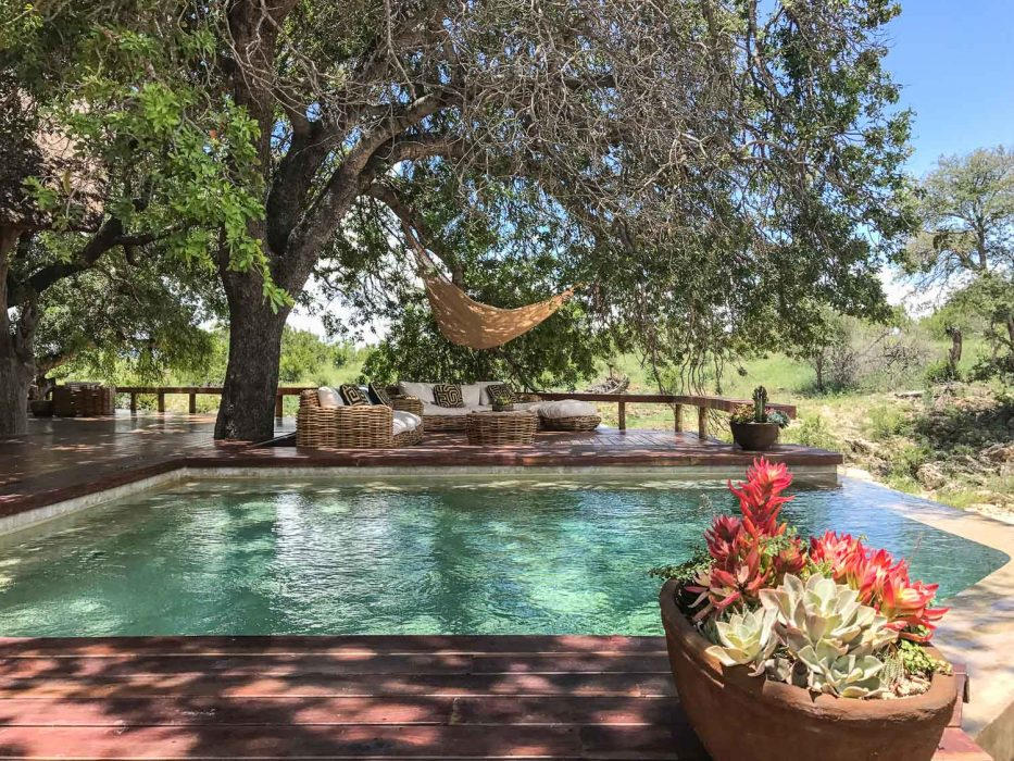 Klaserie Sands River Camp Review: the pool