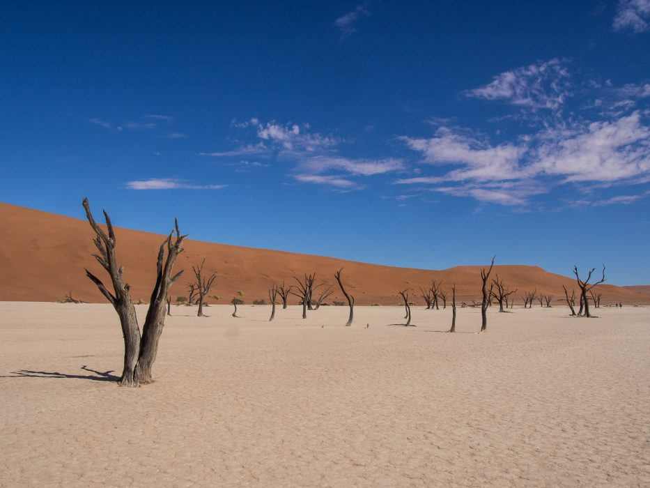 The surreal landscape of 900-year-old dead trees, white clay pan, and sand dunes at Deadvlei.