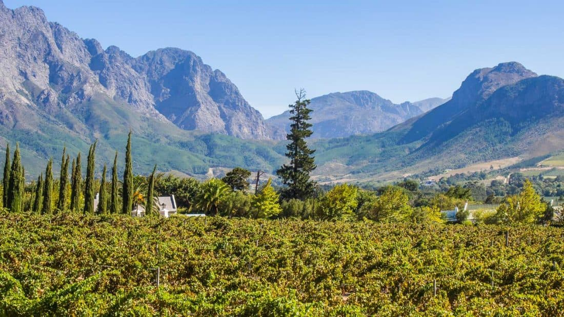 La Providence guesthouse view, Franschhoek