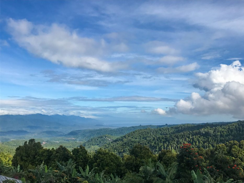 The view from Munduk to the coast