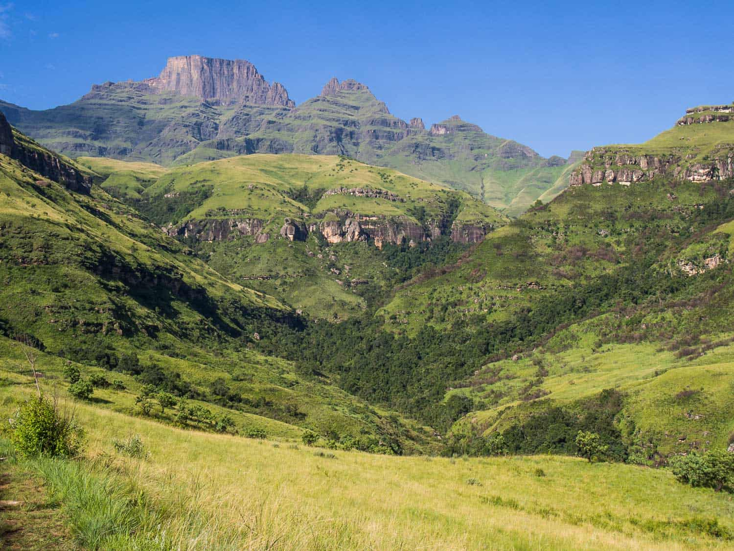 The Drakenberg mountains, one of the highlights of our South Africa road trip from Johannesburg to Cape Town