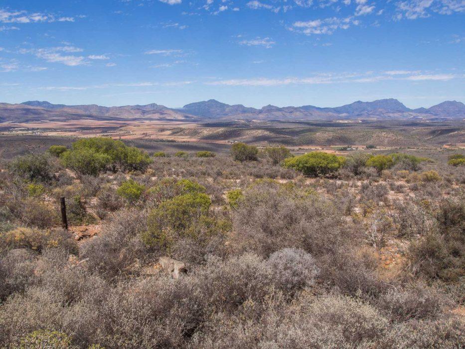 Oudtshoorn semi-desert landscape in South Africa's Klein Karoo
