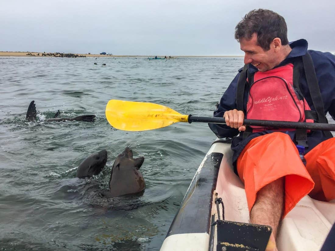 Kayaking with seals in Walvis Bay- a Namibia travel highlight