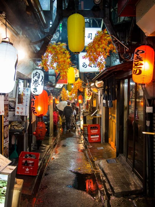 Memory Lane decorated for autumn in Tokyo
