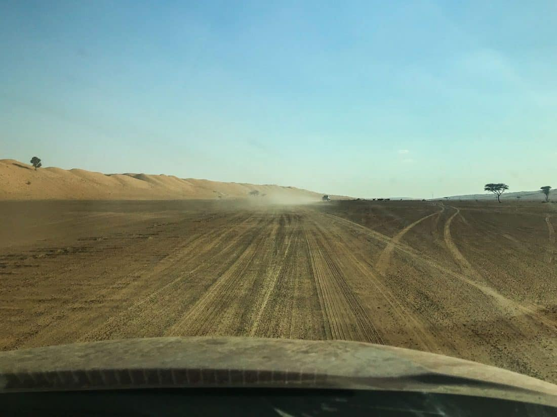 A nerve-wracking drive through the desert to Wahiba Sands