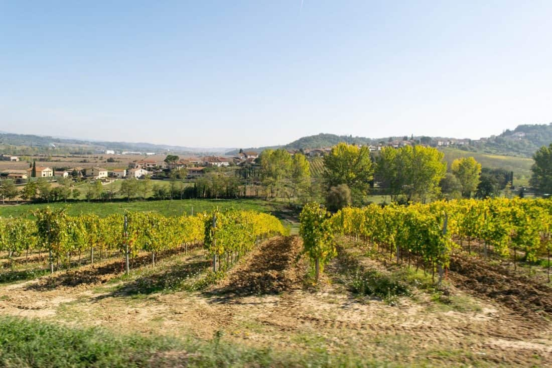A Tuscany vineyard tour from Rome