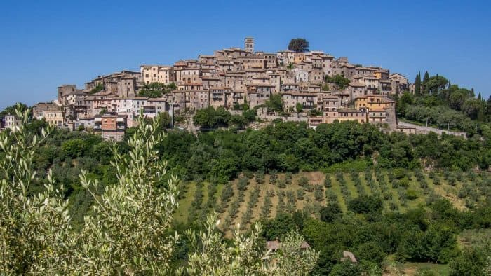 An olive oil tour in Lazio is one of the best day trips from Rome